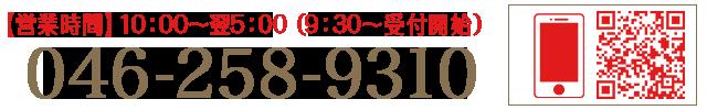 046-258-9310